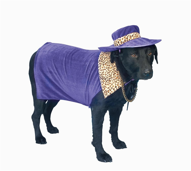 Pimp Doggy Pet Costume