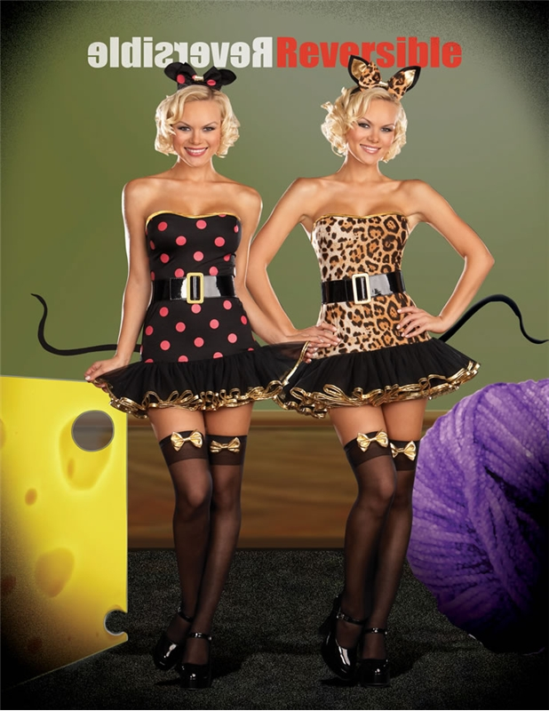 When the Cats Away Reversible 5pc Costume