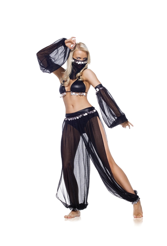 Arabian Dancer 5pc Adult Costume