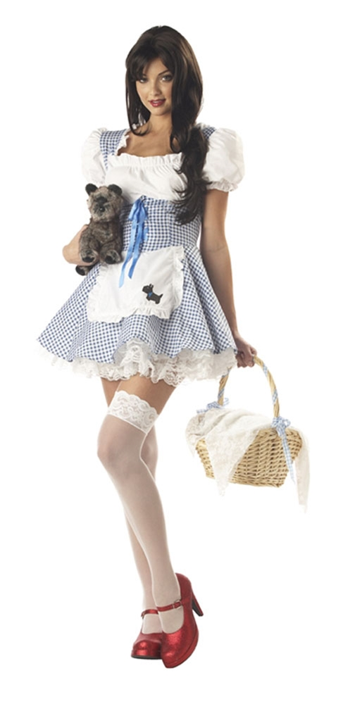 Adult dorothy wizard of oz costume