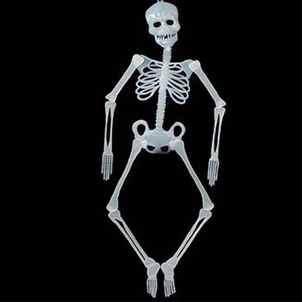 Jointed Skeleton Glow in the Dark Prop