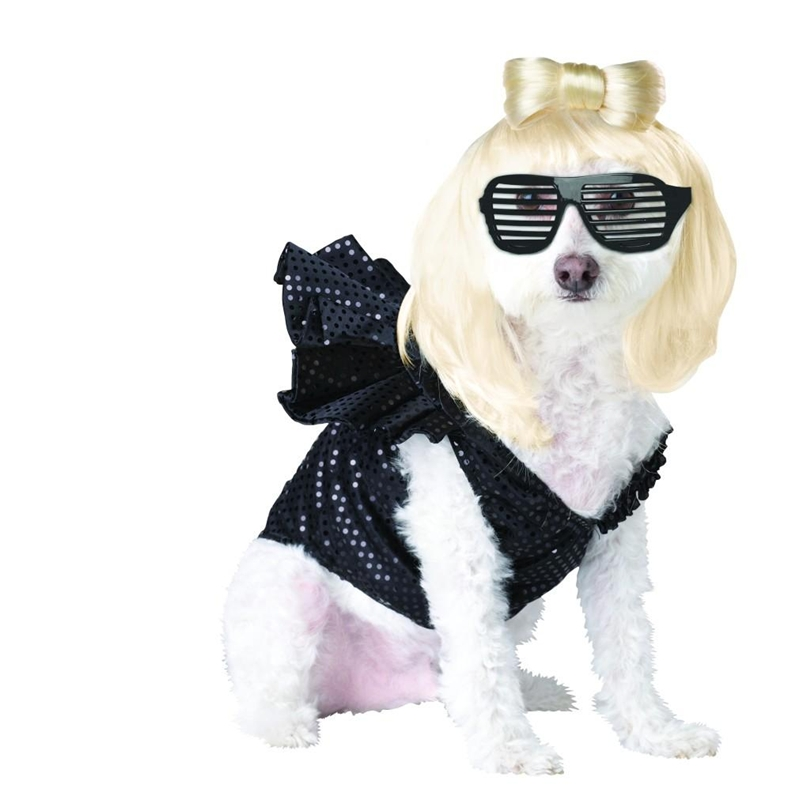 Lady Gaga Pet Costume by California Costumes