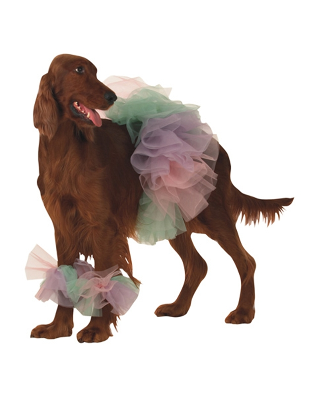 Lil Ballerina Pet Costume
