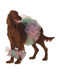 Lil-Ballerina-Pet-Costume