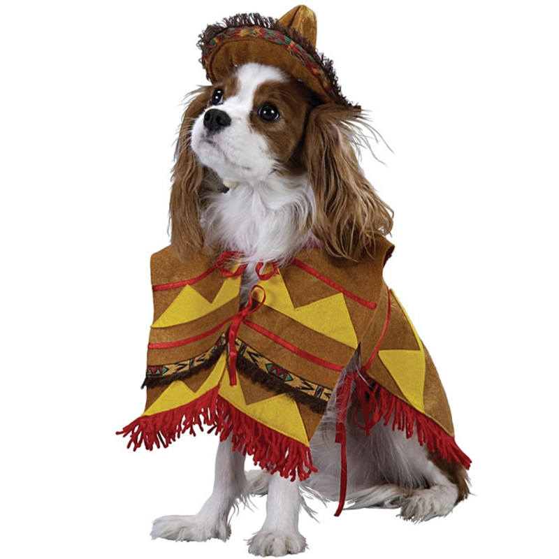 Lil Bandito Pet Costume