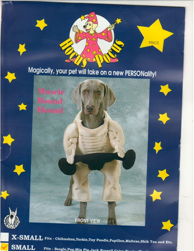 Muscle Bound Hound Pet Costume