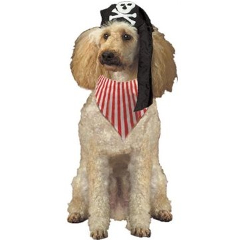 Pirate Pooch Pet Costume