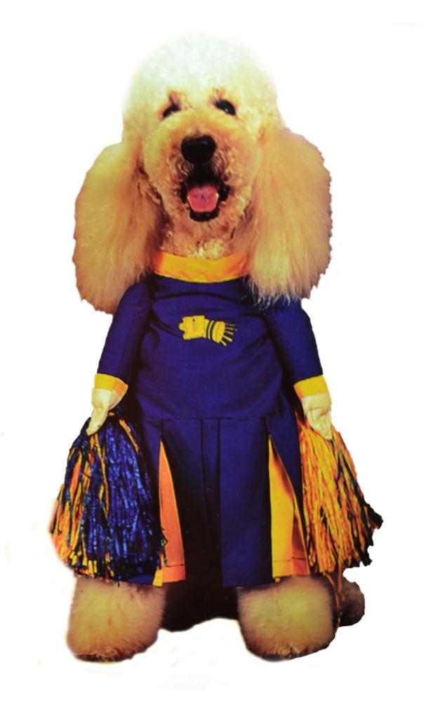 Pom Pom Pet Costume