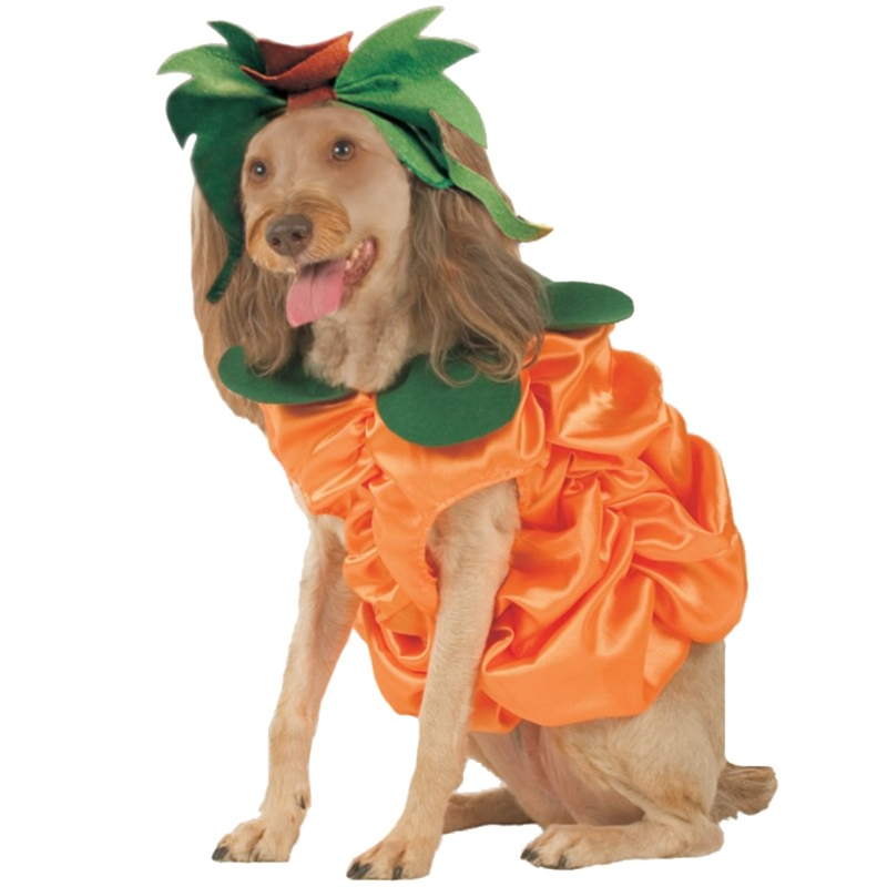 Pumpkin Patch Pooch Pet Costume