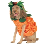 Pumpkin-Patch-Pooch-Pet-Costume