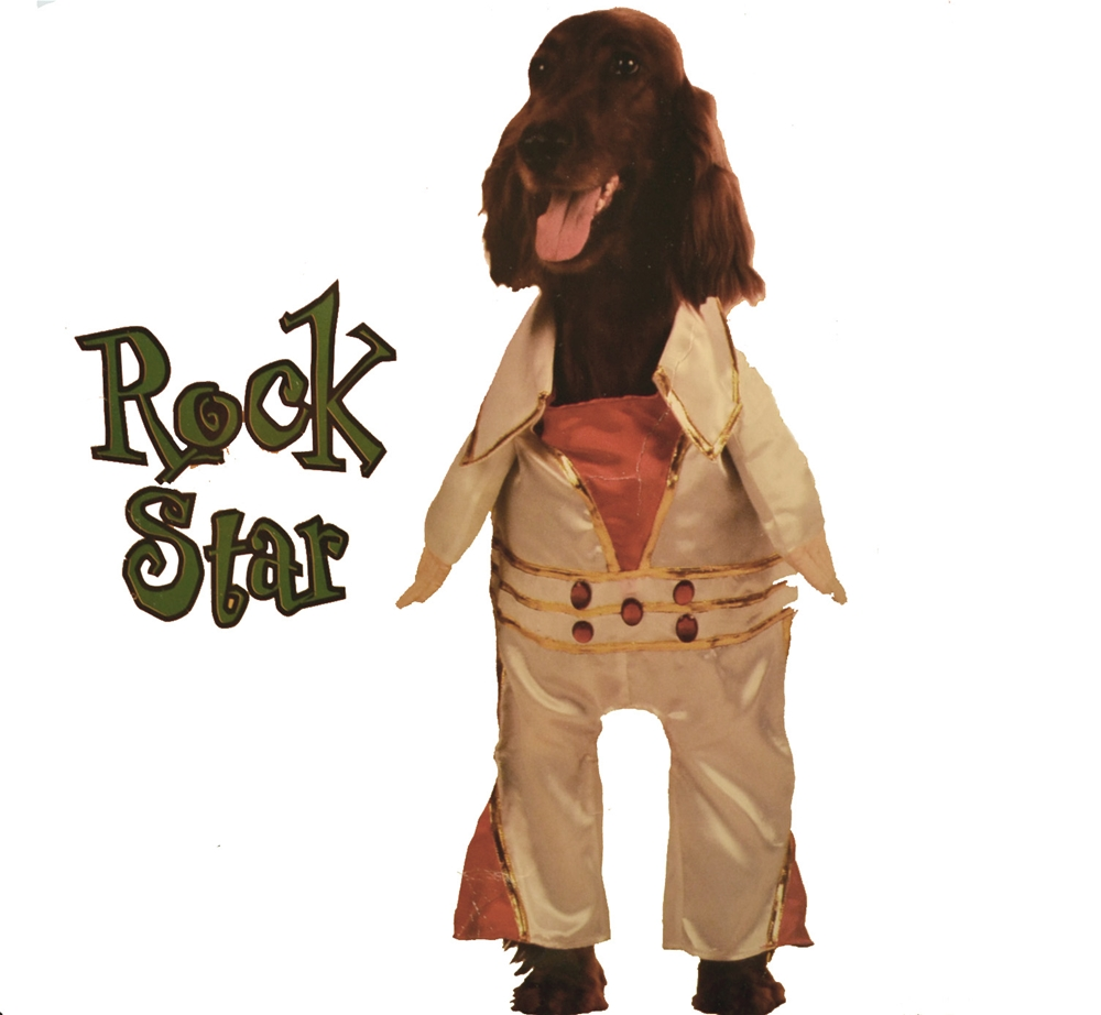 Rock Star Pet Costume