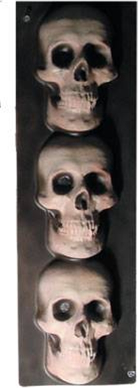 Skull Trim Vertical