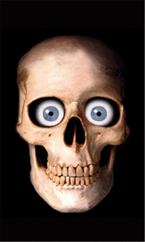 Skull Window Cover