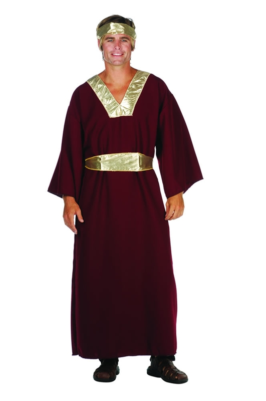 Wiseman Wine Adult Men Costume
