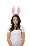 Moveable-Rabbit-Ears