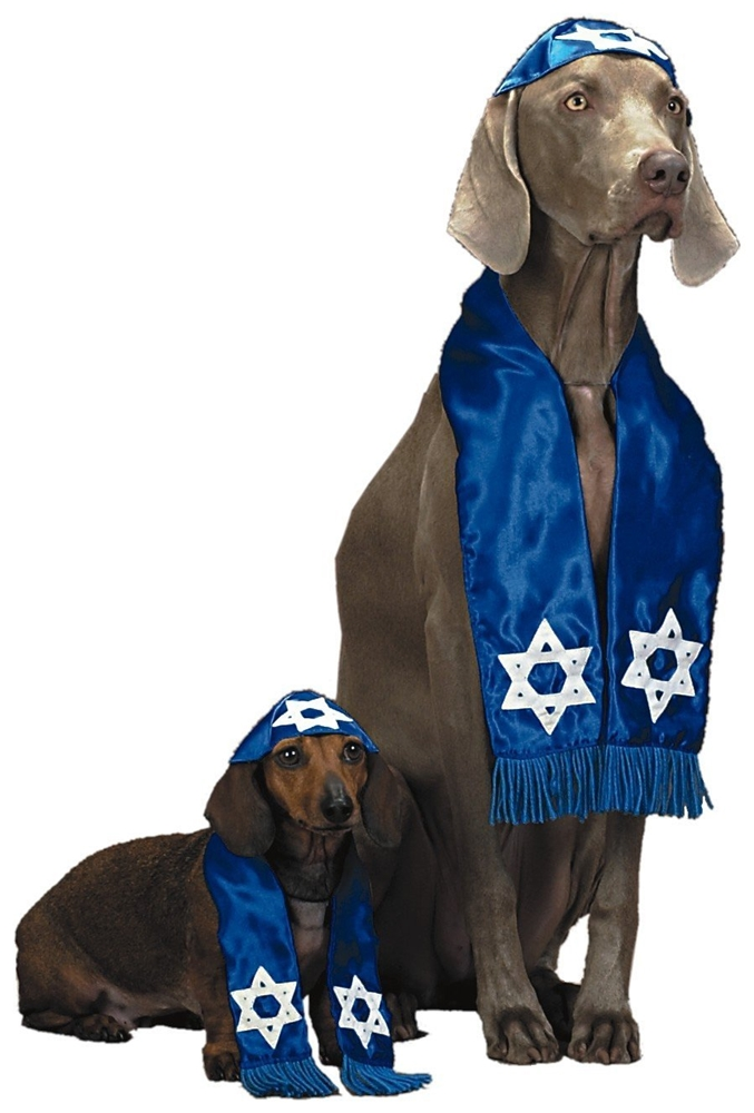 Pup Shalom Pet Costume