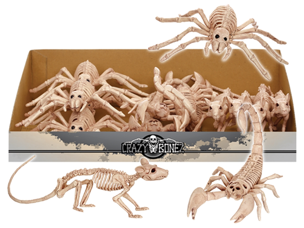 Mini Rat, Spider, or Scorpion Skeleton Prop