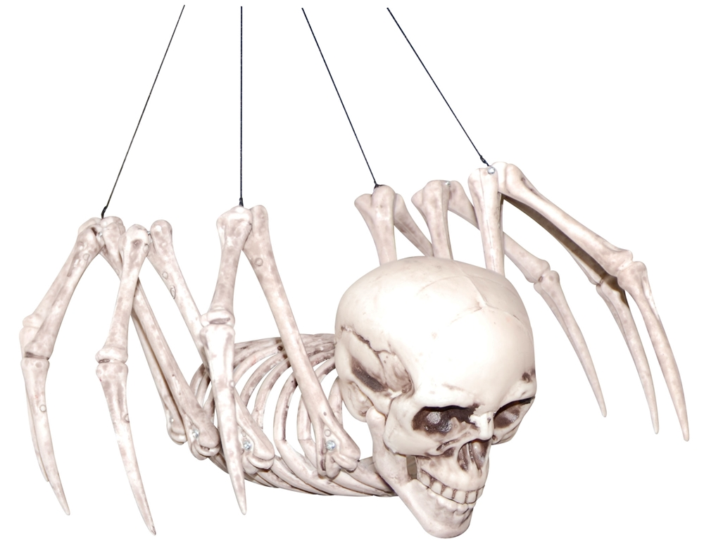 Human Spider Skeleton Prop