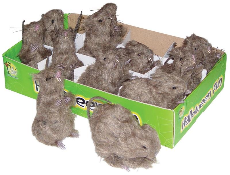 Mini Rats