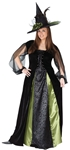 Goth-Maiden-Witch-Adult-Womens-Plus-Size-Costume