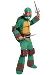Teenage-Mutant-Ninja-Turtles-Deluxe-Raphael-Child-Costume