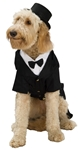 Dapper-Tux-Pet-Costume
