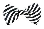 Black-White-Bow-Tie