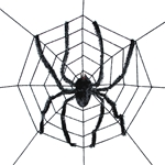 Spiderweb-with-Giant-Spider