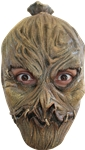 Scarecrow-Child-Mask