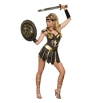 Queen-of-Swords-Warrior-Adult-Womens-Costume