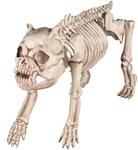 Bones-the-Bulldog-Skeleton-Prop