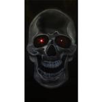 Full-Size-Door-Skull-Decoration