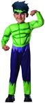Avengers-Assemble-Hulk-Toddler-Costume