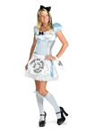 Alice-in-Wonderland-Teen-Costume