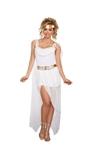 Its-Greek-to-Me-Goddess-Adult-Womens-Costume