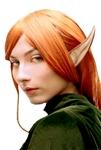 Large-Elf-Ears