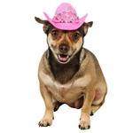 Pink-Tiara-Cowgirl-Pet-Hat