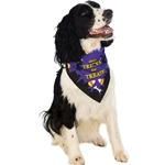 Tricks-for-Treats-Pet-Bandana
