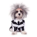 Beetlejuice-Pet-Costume