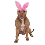 Pink-Bunny-Ears-Dog-Headband