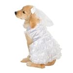 Bride-Dress-Pet-Costume