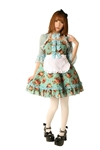 Alice-Rose-Garden-Dress-Adult-Womens-Costume