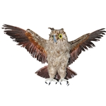 Brown-Owl-with-Open-Wings