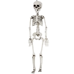 Realistic-Plastic-Skeleton-30in