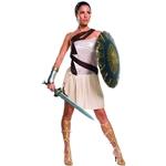 Wonder-Woman-Beach-Battle-Adult-Womens-Costume