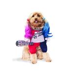 Suicide-Squad-Harley-Quinn-Pet-Costume