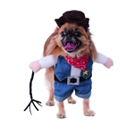 Walking-Cowboy-Pet-Costume