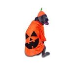 Big-Dog-Pumpkin-Pet-Costume