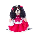 Grease-Rydell-High-Cheerleader-Pet-Costume