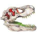 Sonic-T-Rex-Skull